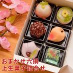おまかせ六撰 上生菓子詰合せ(簡易パッケージ) 和菓子 送料無料