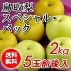 二十世紀梨&赤梨セット2kg詰(5玉前後入) 鳥取県産 赤秀 送料無料