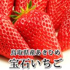 「宝石いちご」(章姫/あきひめ)500g(大サイズ15粒入) 鳥取県境港産 送料無料