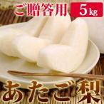 あたご梨5kg詰(4〜6玉入) 鳥取県産 赤秀(ご贈答用) 大玉サイズ 送料無料