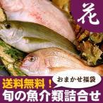 日本海産 旬の魚介類詰合せ(花) 送料無料