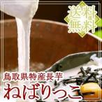 鳥取県北栄町産 砂丘長いも「ねばりっこ」約2kg(2〜3本入) 送料無料(北海道・沖縄を除く)