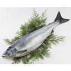 北海道産 天然新巻鮭[中辛](1尾約2.0kg) 送料無料