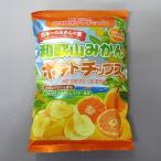 オカザキ紀芳庵 和歌山みかんポテトチップス(120g) 和歌山県ご当地 ポテトチップス
