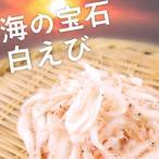 白えび 500g×2セット 1kg 海の宝石 生食可能 台湾産 白エビ 白海老 シロエビ しろえび