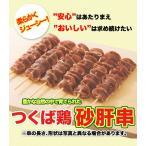 焼き鳥 国産つくば鶏 砂肝串 40g×20本 食感がたまらないつくば鶏を使った砂肝の焼き鳥 バーベキュー、BBQに最適 茨城県産 焼き鳥/焼鳥/やきとり