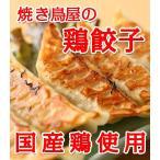 鳥餃子 焼き鳥屋のこだわり鶏餃子 500g×3パック(1個約28g)約1.5kg 約54個〜57個 大ぶりの餃子になります 焼くだけ