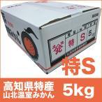 【高知県特産】高級 山北温室みかん 興津系品種 特等級 Sサイズ 5kg