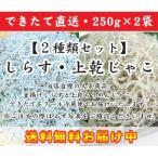 【送料無料・500g】出来たて直送!釜揚げしらす&上乾ちりめんじゃこセット 250g×2袋