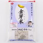 金芽米きぬむすめ5kg BG無洗米 専用計量カップ付 鳥取県産 JA鳥取いなば管内産 令和2年産