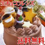 送料無料・濃厚チョコたっぷり♪生チョコケーキ・生チョコフレンズ5号(ホール)