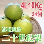 鳥取県産二十世紀梨 4L10kg