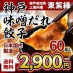餃子 60個 神戸 味噌だれ餃子 神戸南京町 東紫縁 ご当地グルメ 神戸名物 味噌ダレ 送料無料