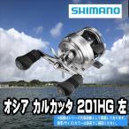 ステラSW 8000PG シマノ 大型スピニング