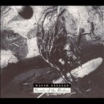 David Sylvian Secrets of The Beehive CD