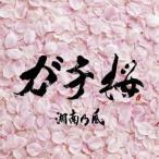 湘南乃風 ガチ桜 12cmCD Single