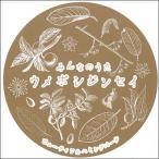 ビューティフルハミングバード みんなのうた ウメボシジンセイ CD