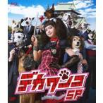 多部未華子 デカワンコ スペシャル Blu-ray Disc