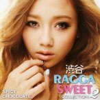 SPICY CHOCOLATE 渋谷 RAGGA SWEET COLLECTION 2 CD