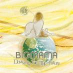 BIGMAMA Dowsing For The Future CD