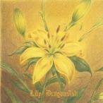 Dragon Ash Lily<初回限定盤> 12cmCD Single