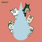 wacci 大丈夫<wacci犬期間限定生産盤> 12cmCD Single