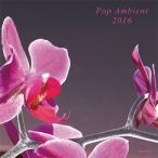 Stephan Mathieu POP AMBIENT 2016 CD