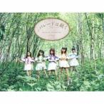 マジカル・パンチライン パレードは続く (サンライズ盤) [CD+ハコスコ]<完全限定生産盤> 12cmCD Single