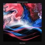 Nothing's Carved In Stone Mirror Ocean [LP+CD] LP 特典あり