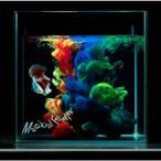 夜の本気ダンス Magical Feelin'<通常盤> 12cmCD Single