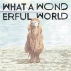 堀込泰行 What A Wonderful World CD