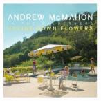 Andrew McMahon アップサイド・ダウン・フラワーズ CD