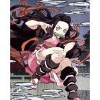 鬼滅の刃 第三巻 [Blu-ray Disc+CD]<完全生産限定版> Blu-ray Disc