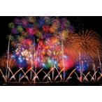 ジグソーパズル BEV-83-087 風景 長岡の大花火 300ピース