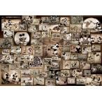 ジグソーパズル TEN-D1000-398 ディズニー ミッキーマウス モノクロ映画コレクション(ミッキー&フレンズ) 1000ピース