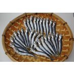 沙丁魚 - 氷見高木水産 干いわし(めざし/うるめいわし一夜干し)30匹