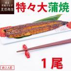 うなぎ 蒲焼き 国産 特々大211-249g×1尾 (約2人前) 送料無料の品物と同梱可