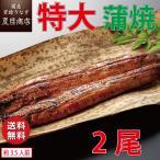 うなぎ 蒲焼き 国産 特大181-210g×2尾 (約3.5-4人前)