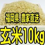 福岡県産 新米 無農薬栽培米 玄米10キロ