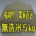 (新米)福岡県産 無農薬栽培米 無洗米5キロ