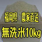 (新米)福岡県産 無農薬栽培米 無洗米10キロ