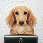 DOG LIFE Color ドッグライフ カラー  「ダックスフンド クリーム」 犬 カラー ウォールステッカー