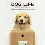 DOG LIFE Color ドッグライフ カラー  「ゴールデンレトリバーB」 犬 カラー ウォールステッカー