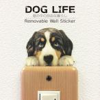 DOG LIFE Color ドッグライフ カラー  「バーニーズマウンテンドッグ」 犬 カラー ウォールステッカー