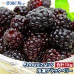 ブラックベリー 冷凍ブラックベリー 1kg 500g×2パック 冷凍フルーツ ヨナナス