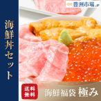 豊洲の海鮮丼セット 極み 約3〜4人前 本マグロ大トロ特盛り200g&無添加生うに&北海道産イクラ(本鮪 ギフト 海鮮福袋 詰め合わせ 寿司 刺身)