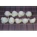 東洋ツバメの巣【高級大三角燕】500g つばめの巣 天然燕の巣