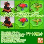 マグネット×ストラップ1[6種(リマニーヤドクガエル/イチゴヤドクガエル(ブルージーン)/グラヌリフェラヌスヤドクガエル各ストラップ/マグネットタイプ)]