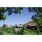 1000ピースジグソーパズル 清水寺(京都)【風景パズル】