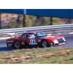 1/24 ザ・モデルカー No.112 ニッサン R30 スカイラインターボ キャラミ9時間耐久仕様 '82